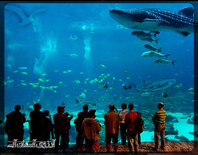 KualaLumpur-AquariumTwinTower