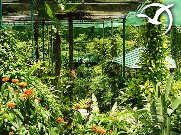 ButterflyPark-Malaysia-KualaLumpur