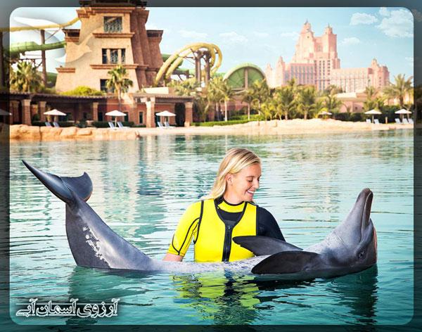 خليج-دلفين-دبي
