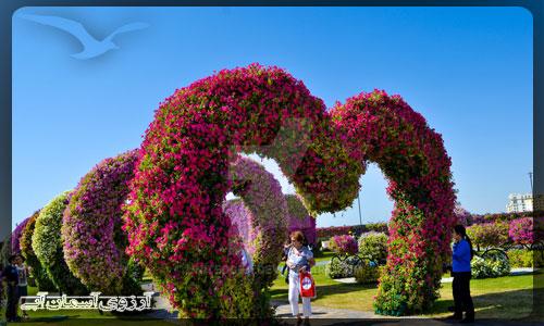 باغ گل معجزه دبي _ آسمان آبي